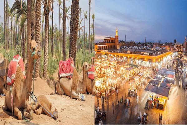 Marrakech: la perle du Sud